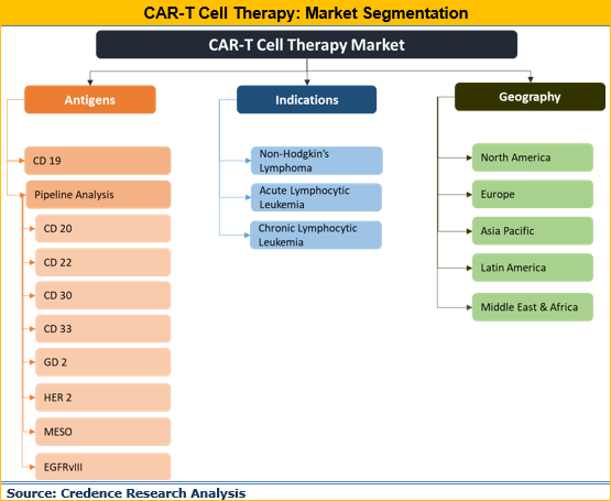 CAR-T Cell Therapy Market
