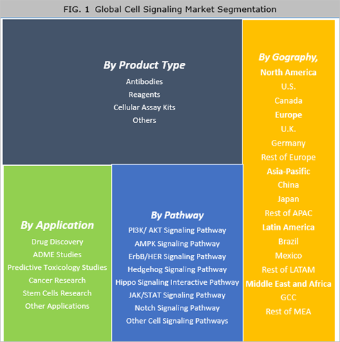 Cell Signaling Market