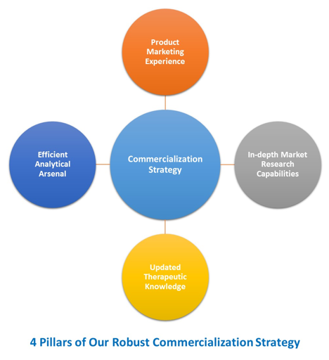 Drug Commercialization Strategies