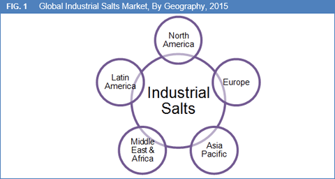 Industrial Salts Market