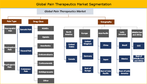 Pain Therapeutics Market