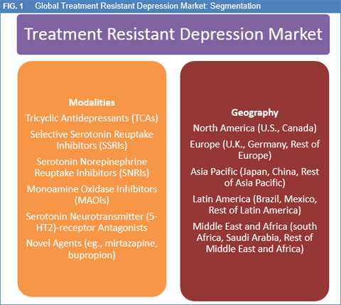 treatment resistant depression market size and forecast to 2024treatment resistant depression market by drug class (tricyclic antidepressants (tcas), selective serotonin reuptake inhibitors (ssris),